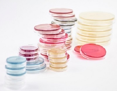 redipor-agar-petri-dishes-contact-plates.jpg